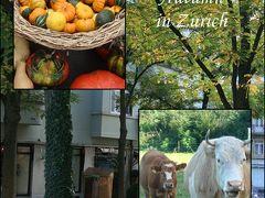 スイス生活 vol.12 秋の訪れ チューリッヒとチューリッヒ近郊グラットフェルデンの町(9月・10月)