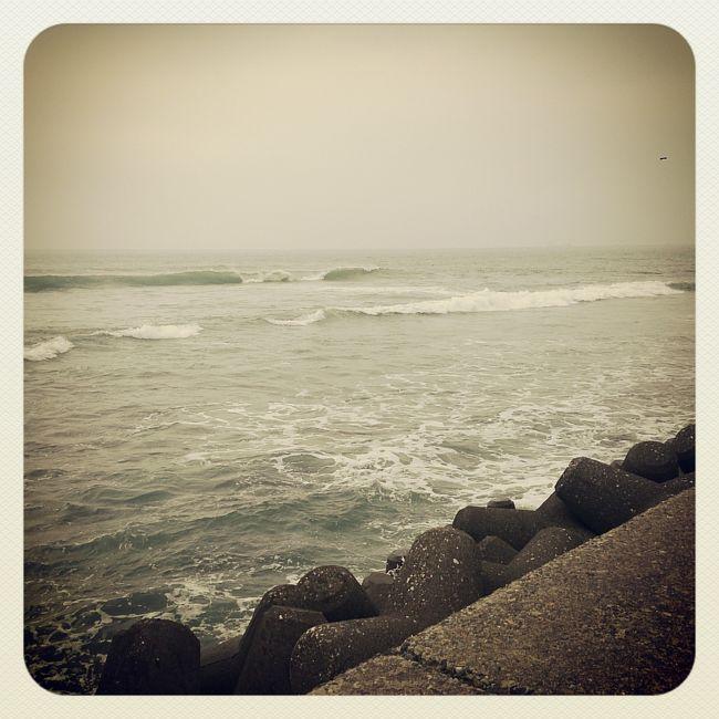 誕生日(Oct. 6th)に千葉に行ってきました。<br /><br />今年の夏は、海に行ってない(見てない)ので、久々の海〜♪<br />天気はあいにく曇りでしたが、美味しいものを食べ、素晴らしい景色も見れたので大満足の誕生日を過ごせました!!