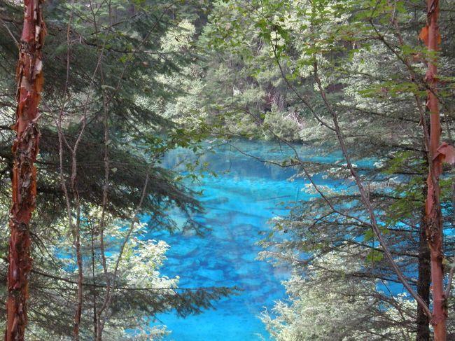 この旅行のメインの九寨溝!<br />神秘的な水の色に魅了され、チベット文化も少し触れた一日。<br />ただ、一番期待していた五彩池が人が多すぎて、素通りだったのが残念。<br /><br /><br /> 8月11日(土) 出国<br /> 8月12日(日) 峨眉山<br /> 8月13日(月) 楽山<br />★8月14日(火) 九寨溝<br /> 8月15日(水) 九寨溝<br /> 8月16日(木) 黄龍<br /> 8月17日(金) 成都<br /> 8月18日(土) 帰国