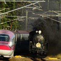 秋田新幹線E6系「スーパーこまち号」との新旧共演!「SL秋田こまち号」に乗りに訪れてみた