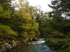 秋の信州 上高地と別所温泉の旅♪ Vol6(第1日目午後) ☆河童橋から梓川右岸道へ紅葉を愛でながら歩く♪