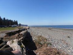 海辺のキャンプ場を探せ~ ②Birch Bayで決まり