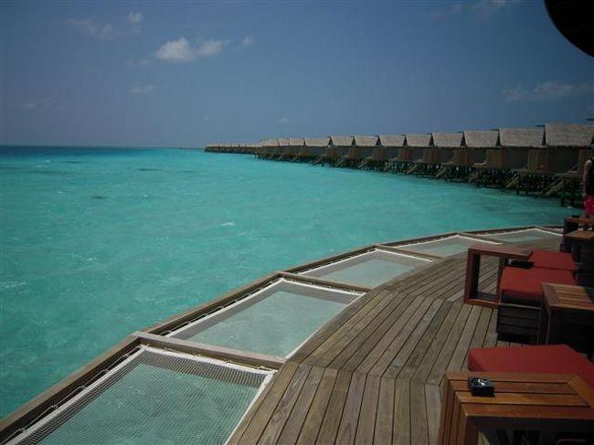 Centara Ras Fushi Resort & Spa Maldives<br />(センターラ ラスフシ リゾート&スパ モルディブ)<br />(2013年10月01日現在の情報です。情報は予告なしに変更されますので、予めご了承ください。)<br /><br />『マリンブルーのラグーンがとっても綺麗!』<br />タイにいくつものホテル&リゾートを展開するセンターラが、2軒目のリゾートを<br />2013年3月24日にオープンしました。<br />12歳未満のお子様が宿泊できませんので、カップルで大人のバカンスを過ごしていただけます。<br />ちょっとセンスが良く、でもカジュアルで気取らない、それでオールインクルーシブプランはとても嬉しい!<br /><br />マーレ国際空港からも近く、到着日に直ぐ移動できるので便利!<br />ラグーンの色がとても綺麗で、お部屋の周りには防波堤がないので、とても美しい景色です!ビーチもソフトでフカフカ〜気持ちがよい〜。<br />早やくのんびりしたい…気分になる心地良い雰囲気です。<br /><br />北マーレ環礁南西側に位置し、空港からスピードボートで約20分。<br />マーレ国際空港到着ホールリゾートカウンター 12番<br />空港では、センターラの空港スタッフがお出迎えをしてくれます。<br />スピードに乗船時はラフジャケット着用&ミネラルウォーターのサービスがあります。<br /><br />桟橋到着後、スタッフが笑顔でお出迎えしてくれます。<br />桟橋にはセンターラの『C』が飾られています。まずは綺麗な海と1ショットを…!<br />お魚の飾りがあるレセプションにご案内。<br />リフレッシュタオルとウエルカムドリンクサービスがあります。<br />宿泊カードを記入し、チェックイン手続きをします。<br />リゾートの地図、日本語のリゾートインフォメーションブックをいただけますので、必ず読みましょう〜。<br />お部屋の説明など、とても丁寧にしてくれますので、わからないことが有ればその場でお尋ねください。<br />お部屋には、施設のご案内のインフォメーションがあります。<br /><br />島の雰囲気<br />徒歩で島内を歩いても10分弱くらいの小さな島。<br />ちょっとセンスがよく、お部屋&プールはボート型のコンセプト。<br />各種レストラン&レセプションは、ナチュラル感を生かしています。<br />妨げになる物が無いので視界がとても美しい〜〜〜。<br />西側のラグーンが得に綺麗で、ただボ〜っと眺めているだけでも飽きません。<br />水上コテージは、南&西側桟橋とありますが、西側桟橋は何処まででも続く綺麗なラグーンの景色。<br />ビーチのお部屋が全室サンセット向きで、目の前のビーチがソフトでフカフカしていてとても気持ちが良いです。<br />ビーチには、サンチェアが並んでおり人気のビーチです。<br />もちろんサンセットの眺めはバツグン!<br />スイミングプールは、ボートの形をしたインフィニティプール。<br />夜は、色といどりに変化し、ロマンティックな場所です。<br />レセプション&レストランは、わら葺屋根、白い壁に、サンドカーペットと、モルディブらしいく、中はおしゃれな飾り付け。天井も高く、オープンエアーの空間です。<br />小さなお子様がいないので、大人の雰囲気で楽しんでいただけます。<br />人気の場所は、もう一つ。Viu Bar!<br />西側水上コテージ桟橋ふもとにある水上バーです。<br />マリンブルーのラグーンが一望でき、テラスにはネットがあり、最高のくつろぎの場。<br />中は窓際がカウンター式のテーブルなので、皆様ラグーンビュー〜。<br />真中は丸く抜けているので、ラグーン内が見えます。<br />1日中人気の場所です。<br />お部屋でのんびり、ビーチでのんびり、プールでのんびり、と…のんびりされている方が多いです。<br /><br />スタッフはとてもフレンドリーで、いつでも気軽に声をかけてくれます。<br />気軽に会話を楽しまれてみてください。<br /><br />ハウスリーフでのスノーケリング<br />東側のハウスリーフは、魚も多くておもろいです。<br />メイン桟橋のふもとにラグーンに降りられる階段がありますので、そこからエントリー。<br />防波堤の間からドロップオフ側に泳げます。リーフは右肩にして水上コテージ方向へ。<br />ドロップオフはなだらか。<br />ドロップオフまでのラグーン内には、テーブル珊瑚が広がっています。<br />珊瑚に住んで
