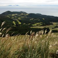 ススキ咲く細野高原