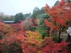 2009.11 京都10日間(3~4日目)