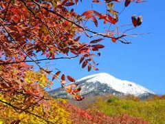 東北癒し旅:温泉と紅葉