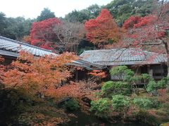 2009.11 京都10日間(8日目)