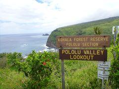 4回目のハワイ島はレンタカーで廻りました。③ノースコハラ地区をドライブで観光