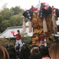 2013年10月今治遠征と新居浜太鼓祭り見物 ~鬼嫁と子鬼2匹付~