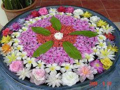 タイ10年 (花)