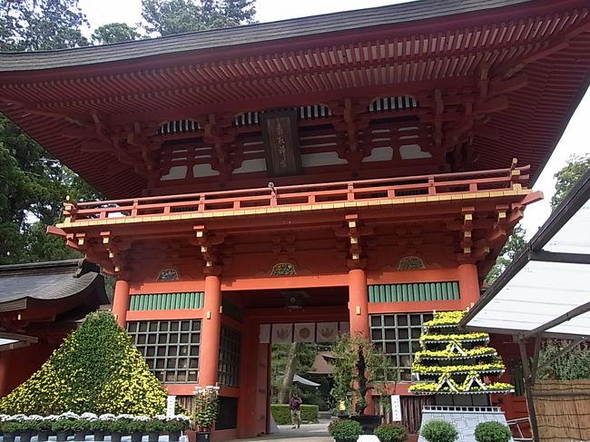 戸隠神社で引いたおみくじ↓は、<br />http://4travel.jp/traveler/maikyukyu/pict/30615779/<br />「第五十七番 経津魂兆(ふつのみたまのうらかた)」で、その中にはこの一文があった。<br /><br />「此は香取の神宮を信心すべし」<br /><br />これは千葉の香取神宮の事か?と思い香取神宮を検索してみると、御祭神は、経津主大神(ふつぬしのおおかみ)でした。気になってた神社だし、これは行くっきゃない!<br />新年のオデカケ初詣の場所にしようかとも思いましたが、ゆっくり散策したかったので、混雑を避け、寒くなる前の今だ!