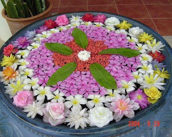 タイ10年美しい花・思い出の花<br /><br />表紙はプーケットのホテルロビーで・・・・・<br />