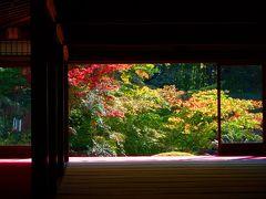 ひと足早く JR「そうだ京都、行こう。」南禅寺・天授庵へ
