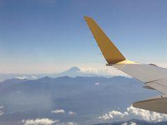 盛岡出張 空から富士山