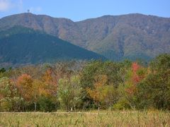 箱根仙石原 紅葉が始まった箱根湿生花園 グレインの美味しいランチ 2013年11月