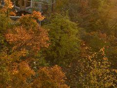 錦秋の面白山高原・紅葉川渓谷に訪れてみた
