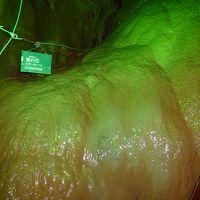 新東名最後は浜松いなさIC.そこから18分で着く「竜ヶ岩洞」の鍾乳石に大感激の巻。
