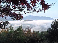 秋のひとりドライブ旅★その③雲海の竹田城