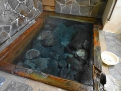 鹿児島 湯めぐり旅 (3) 【 2日目 至福の湯めぐり&出水のツル 】