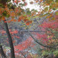 紅葉の白岩半島と龍王峡ハイキング
