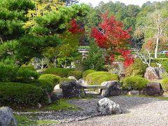 気儘な一人旅(47)・・・大池寺庭園の観賞 下巻