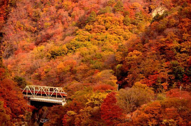 吾妻渓谷と川原湯温泉周辺に広がる紅葉と吾妻線の風景を記録として残そうと、再度この地に訪れてみました。