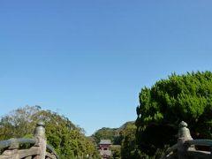 秋の鎌倉♪Vol1 若宮大路~鶴岡八幡宮~小町通りを歩く♪ 美しい菊展を鑑賞♪