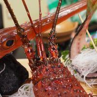 美味しいお魚を求めて南房総へ★グルメ派民宿「政右エ門」&料理の神様「高家神社」の参拝