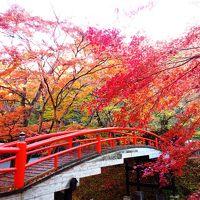 <ほっこり紅葉・群馬旅.2> 紅葉と365段の石段と温泉と・・・ 「伊香保温泉」