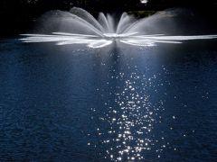 晩秋の宇都宮 ~いつもの散歩道の風景と県立中央公園の紅葉~