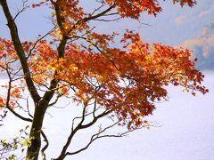 神奈川の紅葉スポットはやっぱり箱根
