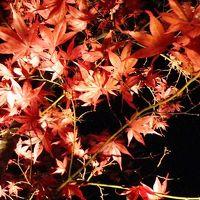 【鞍馬・貴船】 秋の京都を感じる旅 2013