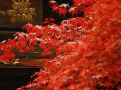 紅葉の定光寺。