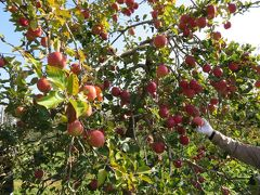 安曇野りんご狩りと諏訪温泉 その1