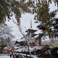 弘前で「冬」に巡り合った。