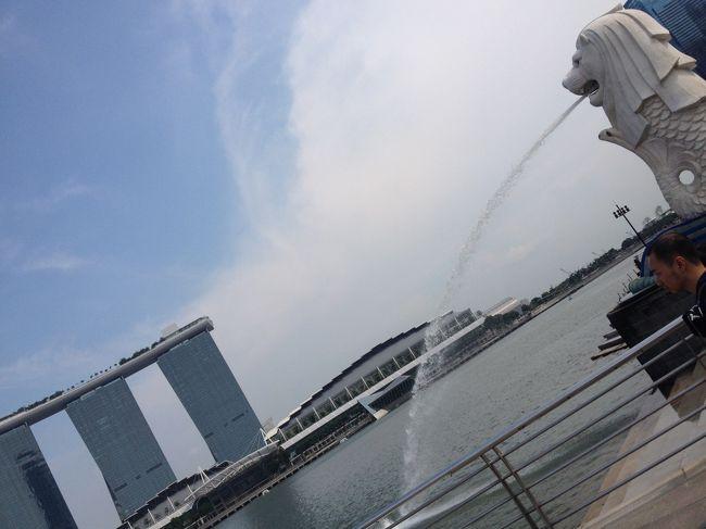 お友達に会いにシンガポール弾丸ツアーしてきました。<br />木曜夜中発、月曜早朝帰り、1日休むだけでいけました。<br />疲れたけど楽しかったです。<br />簡単ですが記録に載せます。