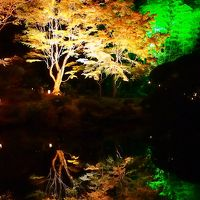 ☆ 幻想の杜、神秘の池 ☆ ~松島・円通院の紅葉ライトアップ~