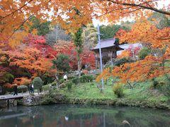 絶景なる紅葉(洞光寺と最上山公園)