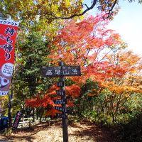 <紅葉の高尾山・2> 富士山だ?紅葉だ!頂上だ! ご褒美は高尾山グルメ&温泉