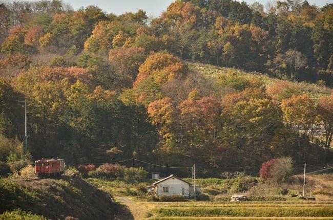 烏山線沿線に広がる、のどかな紅葉の風景を探しに訪れました。