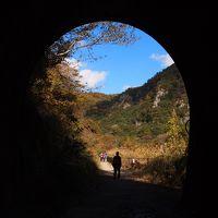 ドキドキトンネル探検そして燃える秋を満喫♪ 武庫川廃線跡ハイク