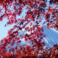 秋色の河口湖と霊峰を訪ねて