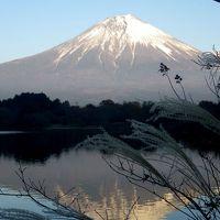 紅葉と逆さ富士に見守られた晩秋の一日(河口湖ー昇仙峡ー田貫湖)