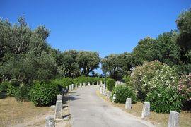 2012初夏、クロアチア等・東欧旅行記(47):6月26日(2):ドブロブニク、泊ったホテルの庭園散策、野鳥、草花、樹木