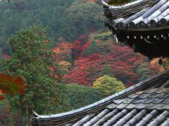 京都 西山三山の一つ 善峰寺