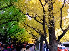 表参道から明治神宮外苑いちょう並木 2013年