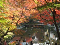 '13 小石川後楽園の紅葉