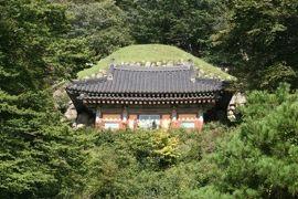 2012初秋、韓国旅行記25(12)慶州、石窟庵、寿光殿、彼岸花