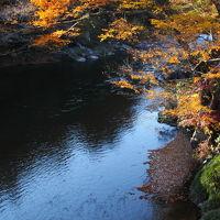 都内で楽しむ自然の美〜〜御岳渓谷の紅葉〜〜