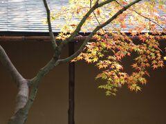 2013 秋の京都に美術と紅葉を求めて No1/2 松花堂庭園